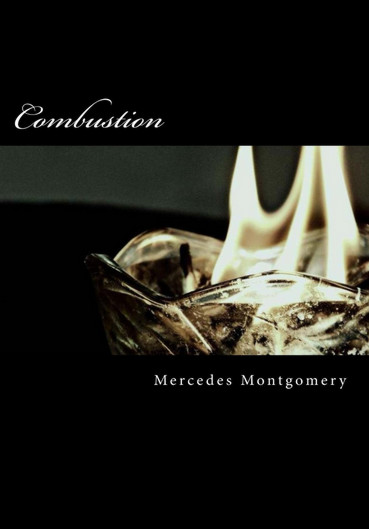 Combustion by Mercedes Montgomery